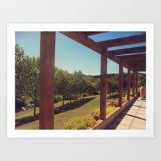 The Vineyard Art Print
