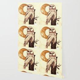 Portrait of an Owl Wallpaper