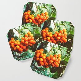 autumn is here Coaster