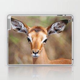 Cute litte Impala, Africa wildlife Laptop & iPad Skin