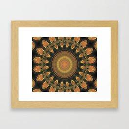 """""""Pumpkin Kaleidscope"""" Framed Art Print"""