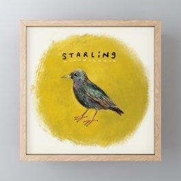 Starling Framed Mini Art Print