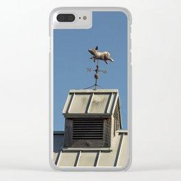 Piggyvane Clear iPhone Case