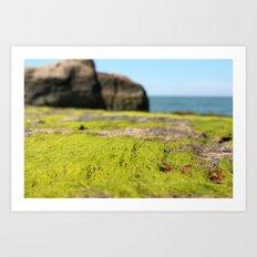 Outer Island I Art Print