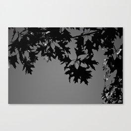 Reversing fall II Canvas Print