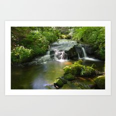 Fairys In Dingley Dell Art Print
