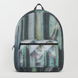 closeup green cactus with old vintage wood background Backpack