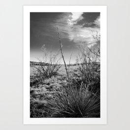 Colorado Rocks #4 Art Print