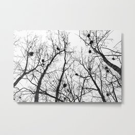 Branches, Nests, Home Metal Print