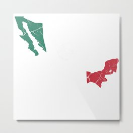 Mexico Mexico City Central America Gift Metal Print