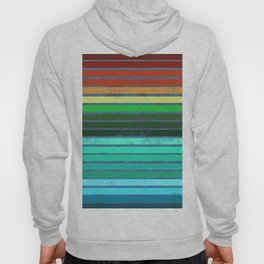 Colorful Lines Hoody