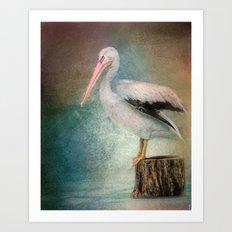 Perched Pelican Art Print