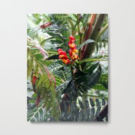 Tropical Heliconia Flowers 03 Metal Print