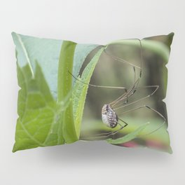 Daddy longlegs Pillow Sham