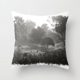 Foggy Path Throw Pillow