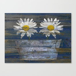 White Daisy Flowers Washtub Blue Country Cottage Chic Art A306 Canvas Print