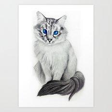 Ojos Azul Art Print
