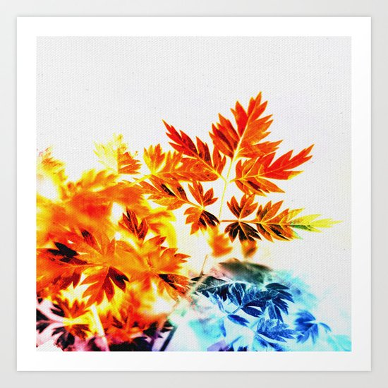 Enchanted Fern Leaves Art Print
