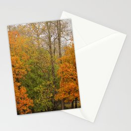 Leaning Into Autumn Stationery Cards