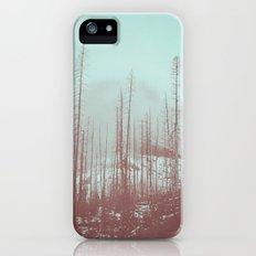 Burnt Winter iPhone (5, 5s) Slim Case