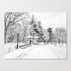 New York City Winter Trees in Snow Canvas Print