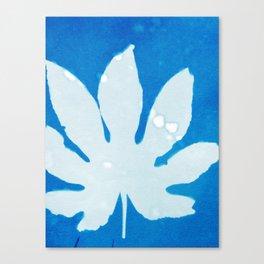 Colored Leaf Canvas Print