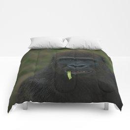 Lope The Gorilla Comforters