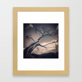 Burmis Tree Framed Art Print