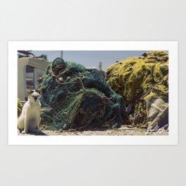 A cat and a fishing net Art Print