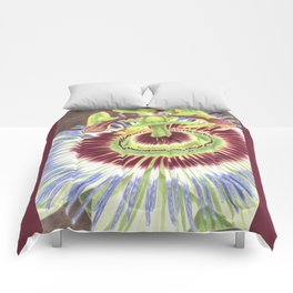 Passion Flower Comforters