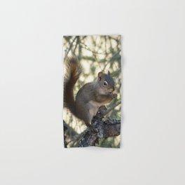 Soldotna Red Squirrel Hand & Bath Towel