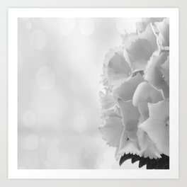Hydrangea & bokeh Art Print