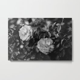 Romantic Black and White Flowers Metal Print