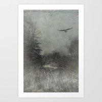 freedom Art Prints featuring freedom by Dirk Wuestenhagen Imagery