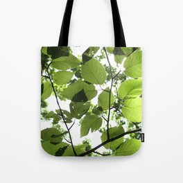 Where The Light Is Tote Bag