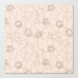 Australian Waxflower Line Floral in Natural Canvas Print