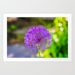 Purple + Blue Flower Art Print