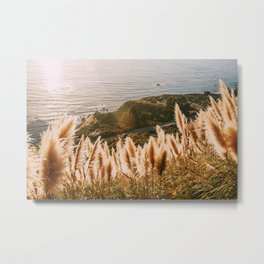 Big Sur at Sunset Metal Print
