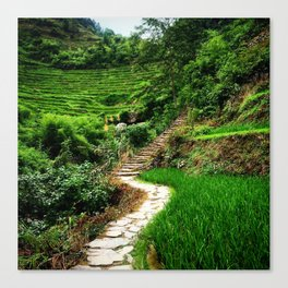 Path through the mountains Canvas Print