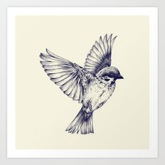 lost bird Art Print