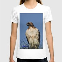 snatch T-shirts featuring Red-Tailed Hawk on Watch at Foothill and B Street by Ralph S. Carlson