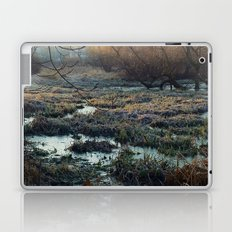 Is This What We've Seen All Along? Laptop & iPad Skin