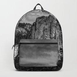Half Dome Chrome Backpack