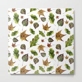 Magic of fall leaves Metal Print