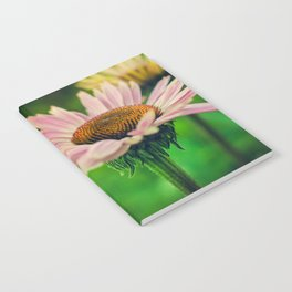 Daisy VI Notebook