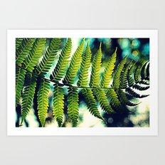 Fern For You Art Print