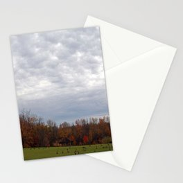 Geese in the Park Stationery Cards