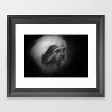 Mähnen Äffchen  Framed Art Print