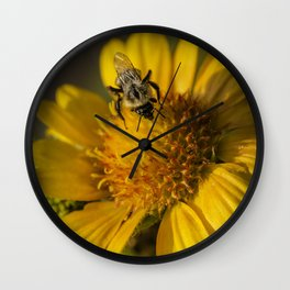 Gathering Pollen Wall Clock