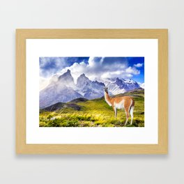 Patagonia landscape in Torres del Paine, Chile Framed Art Print